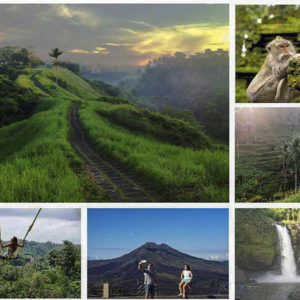 Bali Private Tour Campuhan Ridge Walk